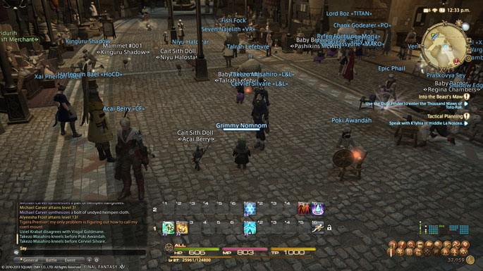final-fantasy-xiv-a-realm-reborn-server-issues-2