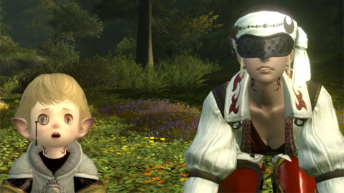 final-fantasy-xiv-a-realm-reborn-server-issues-7